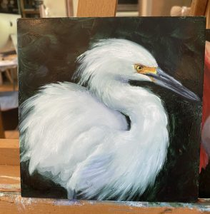 painting of soft snowy egret by martha dodd